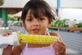 Gotowana kukurydza w kolbach